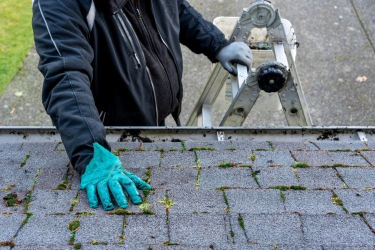 Tackle Your Spring Roof Maintenance In 5 Easy Steps